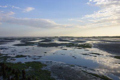 Das Wattenmeer auf Langeoog
