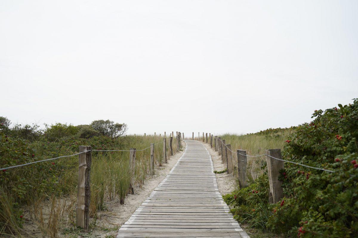 Ein Weg aus kleinen Holzplanken mit einem mit Holzpfählen abgetrennten Zaun in der Graslandschaft