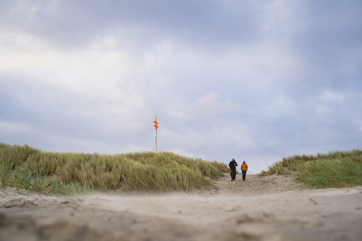 Zwei Spaziergänger in der Dünenlandschaft