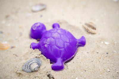 Ein lila Schildkrötenförmchen liegt gemeinsam mit einigen kleineren Muscheln im Sand