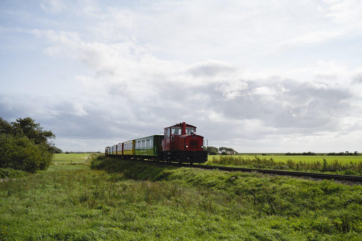 Die bunte Inselbahn auf dem Weg nach Langeoog durch grüne Natur